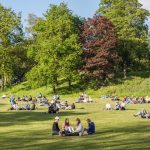 The end of parklife as we know it? The battle for Britain's green spaces