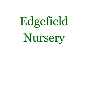 Edgefield Nursery