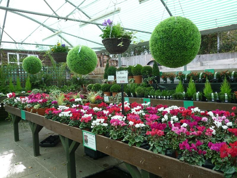 Overstrand Garden Centre