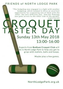 croquet taster day