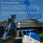 Chrome Hare Images